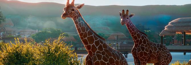 E3 2019: 17 минут геймплея Planet Zoo