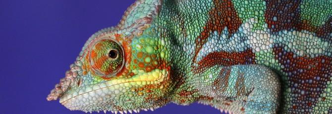 В MIT создали умные чернила, которые могут менять свой цвет