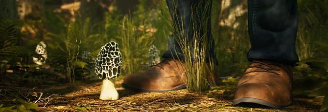 Природа Северной Америки в трейлере симулятора грибника Morels: The Hunt