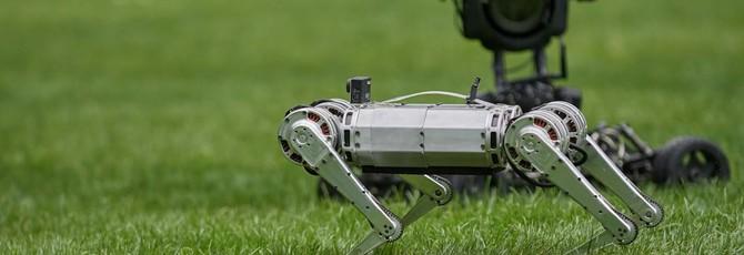 Видео: девять роботов Mini Cheetah резвятся, падают и играют в футбол
