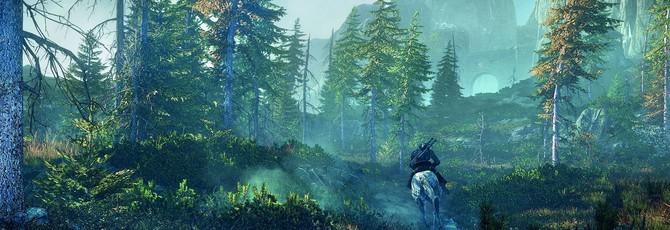 Новый трейлер Witcher 3 – Мир игры