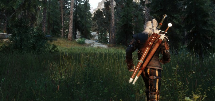 Это The Witcher 3: Wild Hunt на движке Skyrim