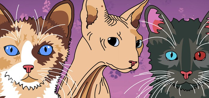 Симулятор свиданий кошек пробрался в Steam Greenlight