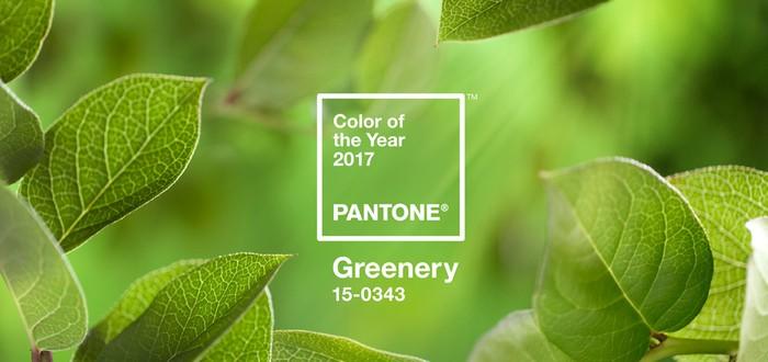 Объявлен цвет 2017 года