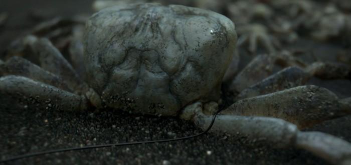 Фото Эммы Стоун в образе для Death Stranding — фейк