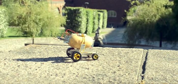 Изобретатель превратил картошку в роботизированного питомца. Безумие!