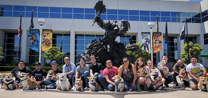 Собаки, кошки и другие звери Blizzard подписывают соглашение о неразглашении