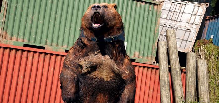 Гайд по Far Cry 5 — все животные-компаньоны (Бумер, Чизбургер и Персик)