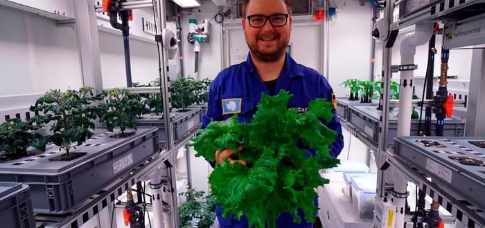В Антарктиде собрали урожай овощей