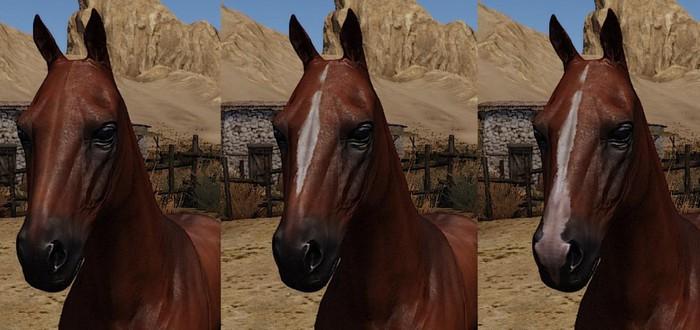 Разработчики Mount & Blade 2: Bannerlord рассказали о разных видах лошадей