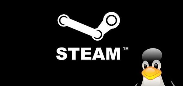 Стартовала закрытая бета Steam для Linux