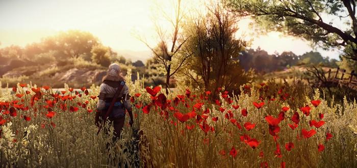 Считаем деньги CD Projekt: Выручка и продажи The Witcher 3 выросли