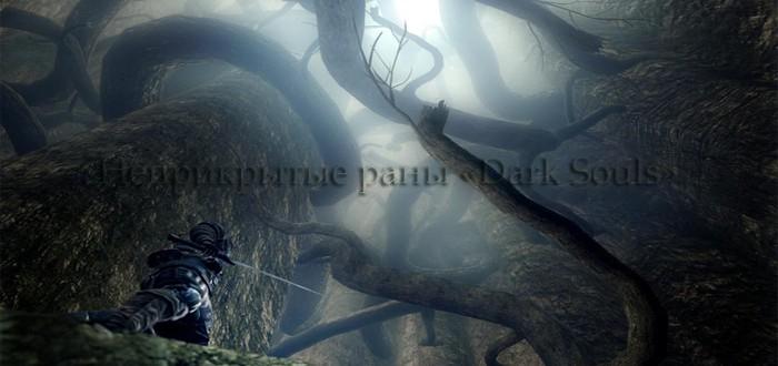 Неприкрытые раны «Dark Souls»