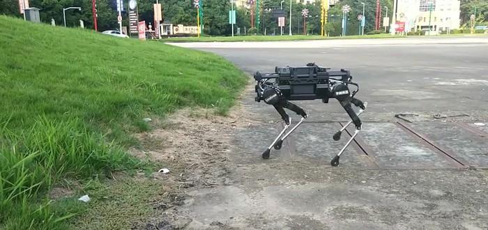 Google учит роботов двигаться с помощью имитации движений животных