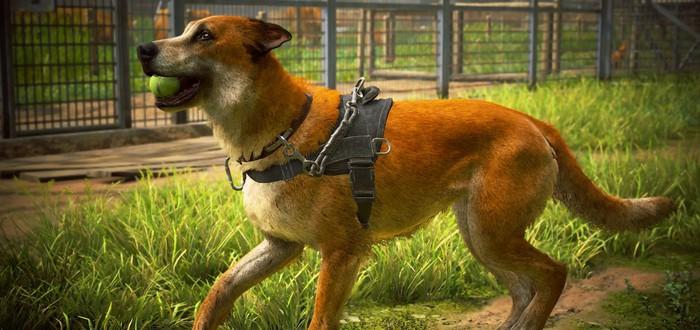 Polygon рассказало про ограничения от Sony для рецензентов The Last of Us 2