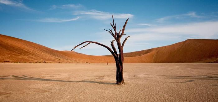 В Долине смерти зафиксирован температурный рекорд за последние 100 лет