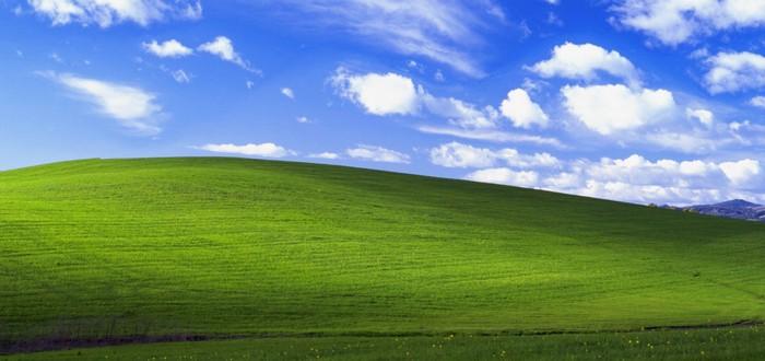 В сеть попал исходный код Windows XP