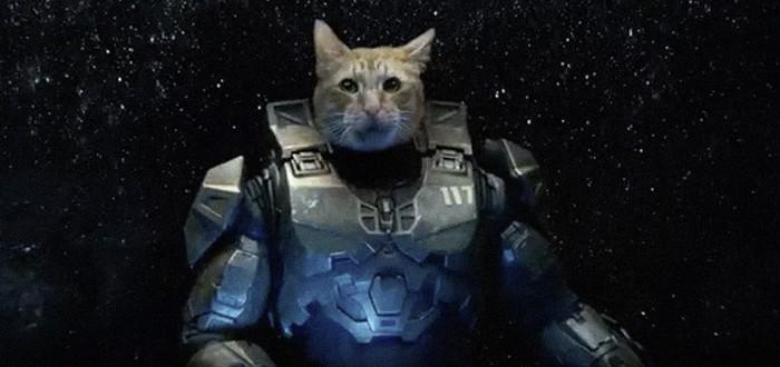 Мастер Чиф снял шлем и оказался... котом