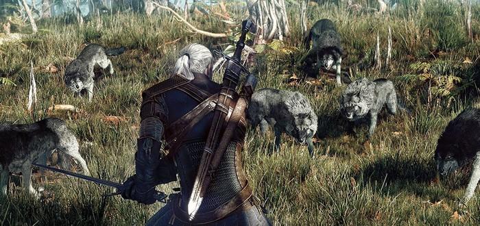 Симуляция меха в Witcher 3 значительно снизит частоту кадров