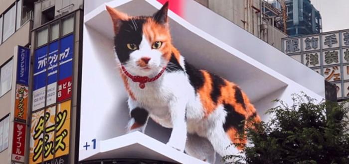 На одной из улиц Токио появился огромный 3D-кот
