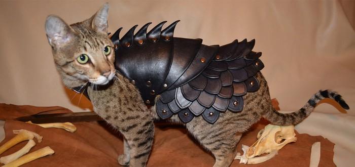 Кожаная боевая броня для вашей кошки