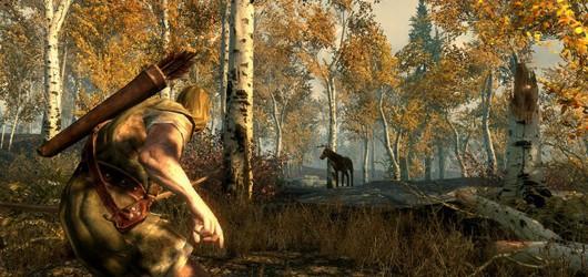 The Elder Scrolls V: Skyrim – новые детали
