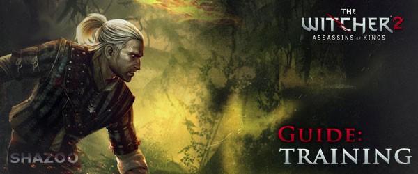 Гайд Witcher 2 – Тренировки (Training)