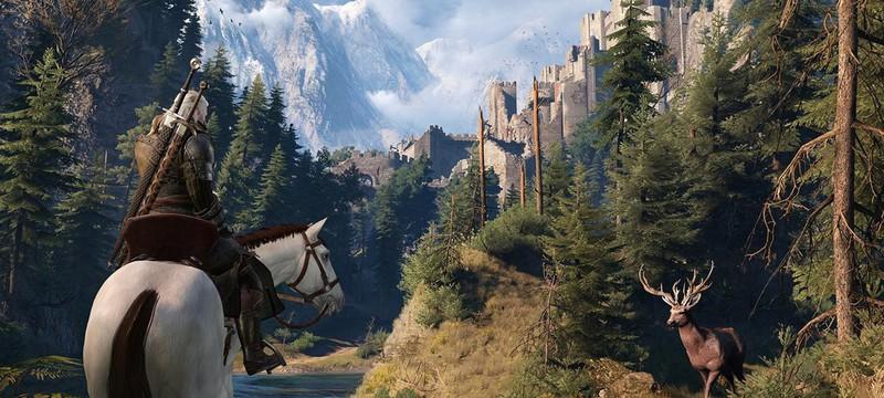Новый скриншот The Witcher 3: Wild Hunt
