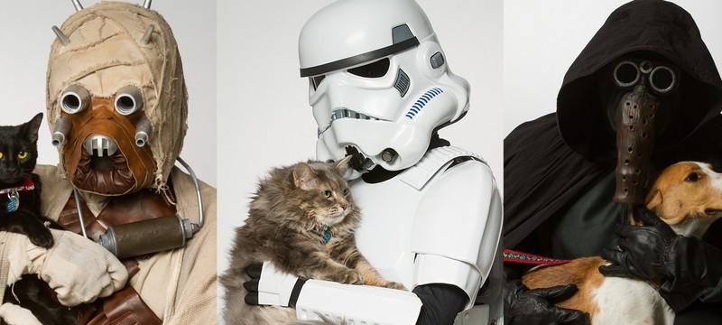 Косплееры Star Wars хотят, чтобы вы взяли животное из приюта