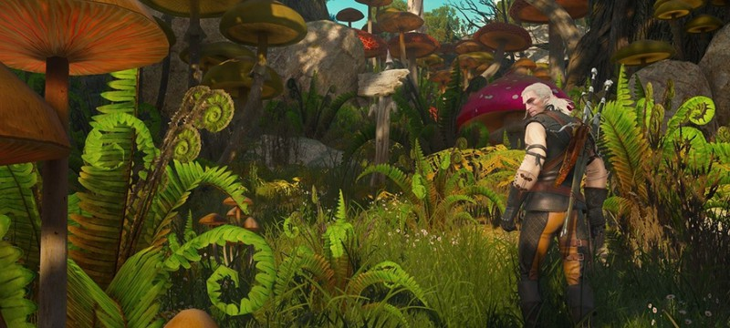 Карта DLC Blood and Wine для The Witcher 3 сравнима со всеми островами Скеллиге вместе