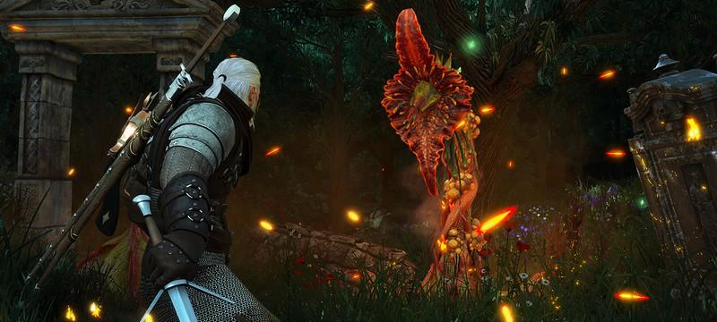 Никакого контента для The Witcher 3 после Blood and Wine