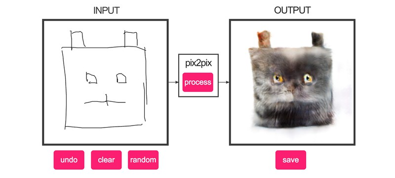 Котята на Shazoo — поделитесь своим котенком