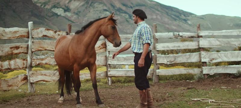 Как приручают настоящих диких лошадей Патагонии