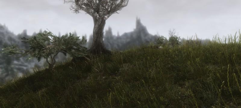 Новая версия мода Skyrim для потрясающе красивой травы