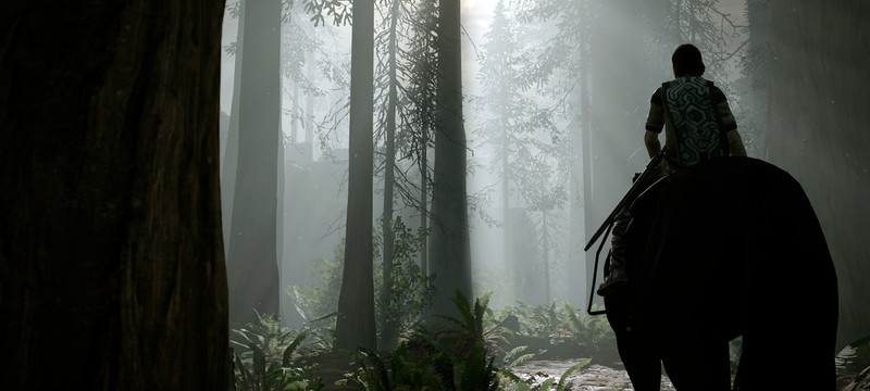 Прогулки по запретной земле: кадры ремастера Shadow of the Colossus