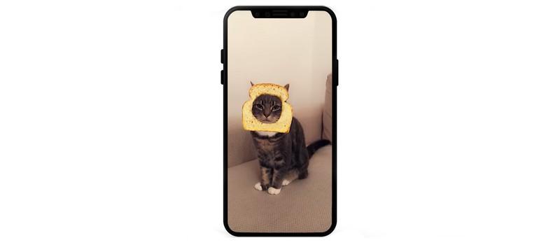 Snapchat получил фильтры для кошек