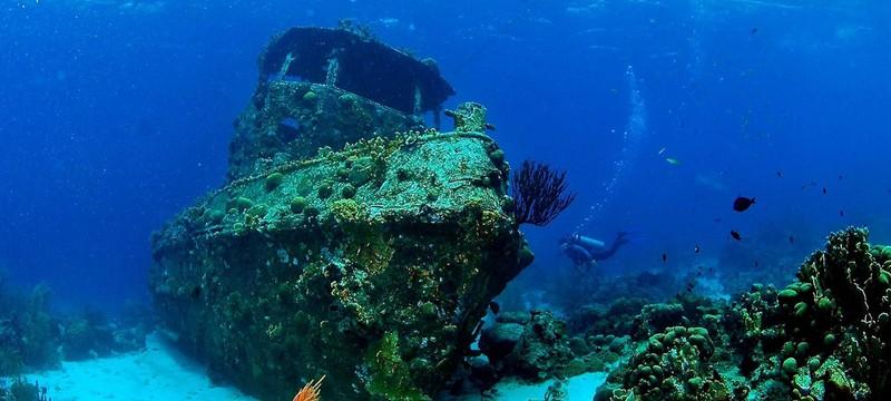 В Чёрном море обнаружили останки греческого торгового корабля