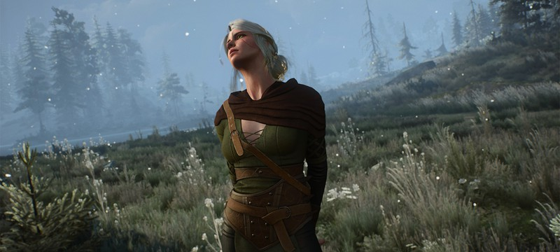 Новый мод The Witcher 3 повышает частоту кадров интерфейса