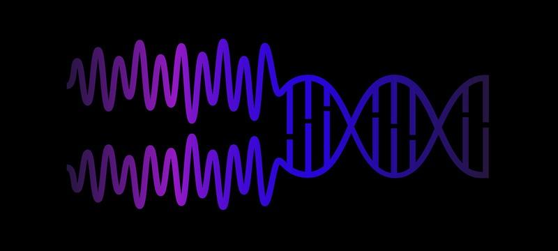 Создан первый репрограммируемый ДНК-компьютер