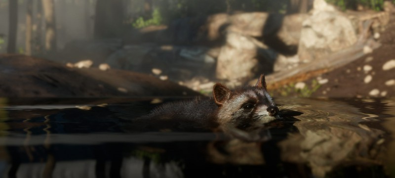 Замена сейвов позволяет играть в Red Dead Redemption 2 за животных