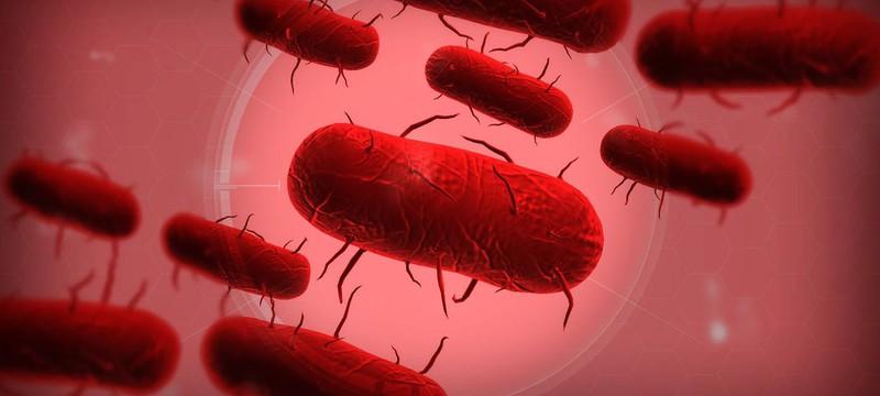 В Plague Inc. добавят режим борьбы с пандемией