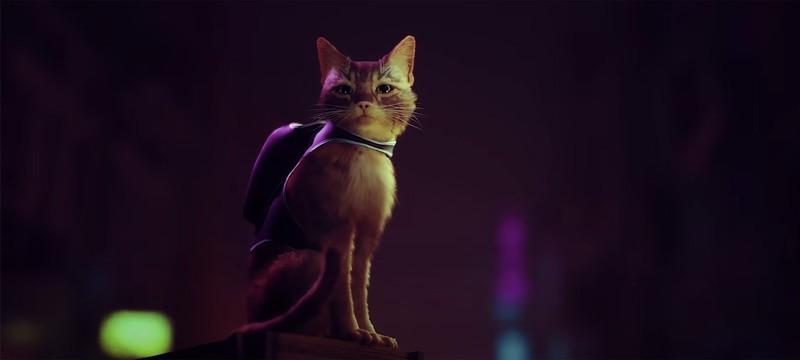 Для PS5 анонсирован симулятор бездомного кота Stray — релиз в 2021 году