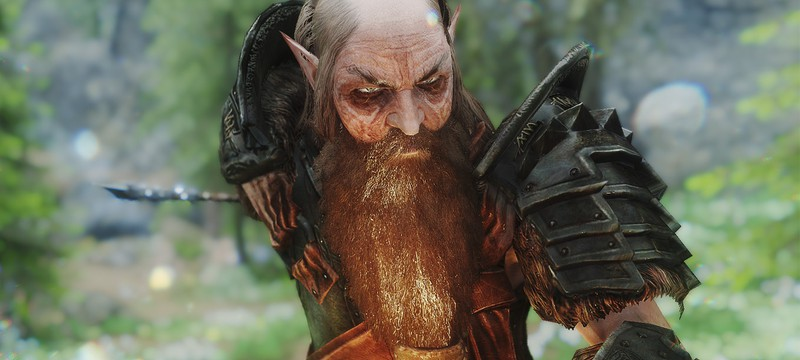 Новый мод Skyrim позволяет отращивать роскошные бороды и усы