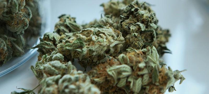 Палата Конгресса США проголосовала за декриминализацию марихуаны на федеральном уровне