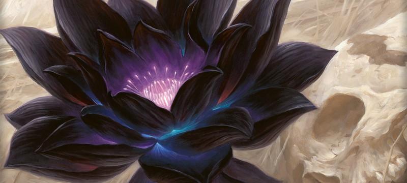 Коллекционер Magic: The Gathering открыл винтажный бустер и получил Черный Лотос, стоимостью от 5000 до 60 000 долларов