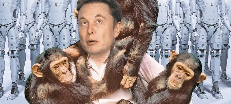 Маск показал обезьяну, которая играет в Pong силой мысли благодаря чипу Neuralink