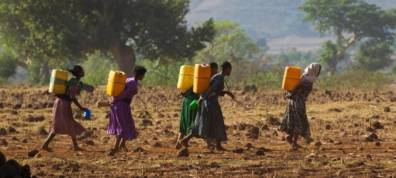Климат: На Мадагаскаре голод из-за многолетней засухи