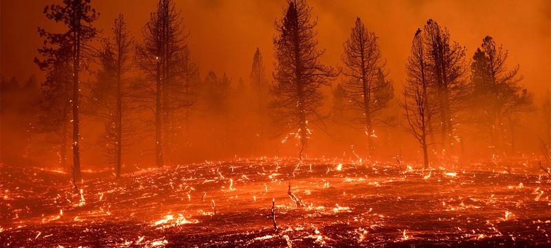 Лето 2021 года стало самым жарким в США, побив рекорд Великой засухи 1936 года