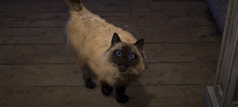 Не беспокойтесь за кошку из трейлера Forspoken, она не голодает
