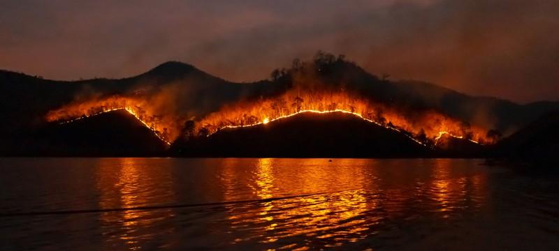 За лето 2021 года лесные пожары выбросили больше углекислого газа, чем Индия за весь год